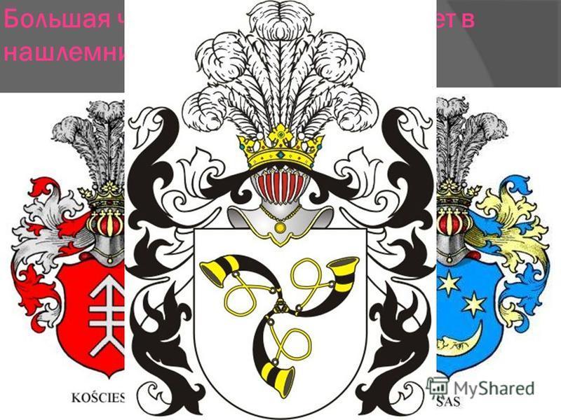 Большая часть гербов Польши имеет в нашлемнике страусиные перья.