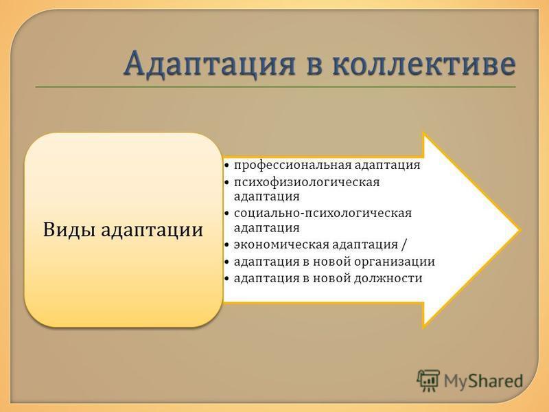 профессиональная адаптация психофизиологическая адаптация социально - психологическая адаптация экономическая адаптация / адаптация в новой организации адаптация в новой должности Виды адаптации