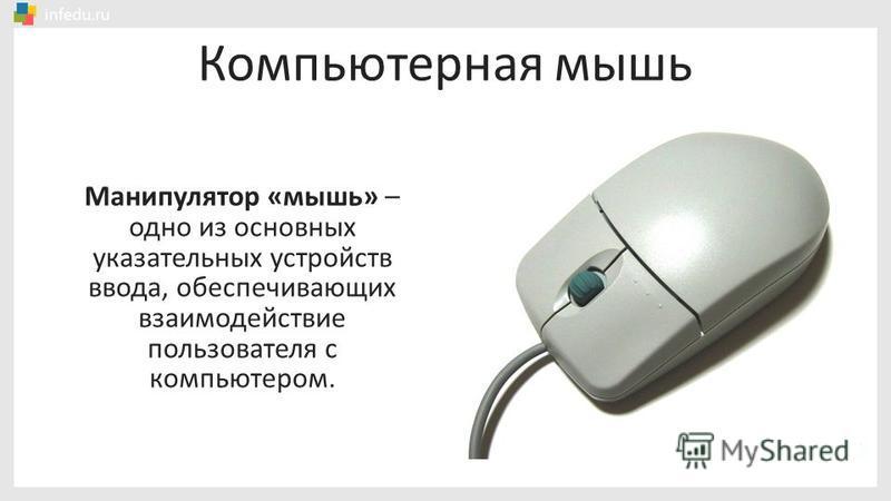 Компьютерная мышь Манипулятор «мышь» – одно из основных указательных устройств ввода, обеспечивающих взаимодействие пользователя с компьютером.