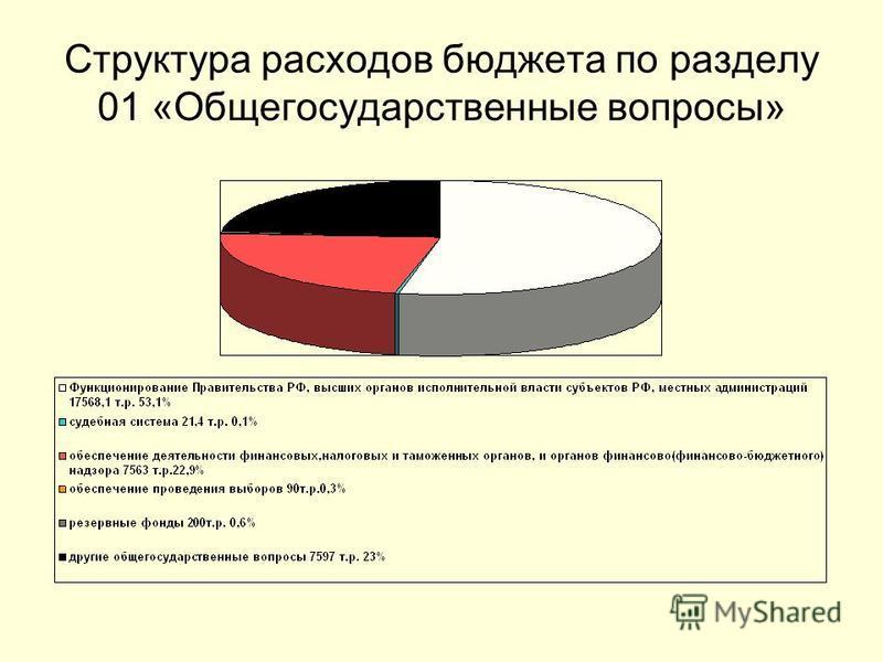 Структура расходов бюджета по разделу 01 «Общегосударственные вопросы»