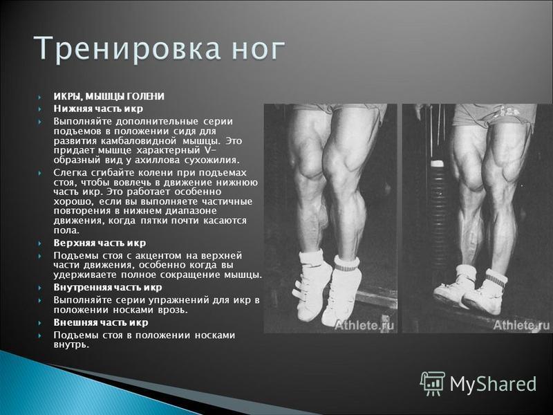 ИКРЫ, МЫШЦЫ ГОЛЕНИ Нижняя часть икр Выполняйте дополнительные серии подъемов в положении сидя для развития камбаловидной мышцы. Это придает мышце характерный V- образный вид у ахиллова сухожилия. Слегка сгибайте колени при подъемах стоя, чтобы вовлеч