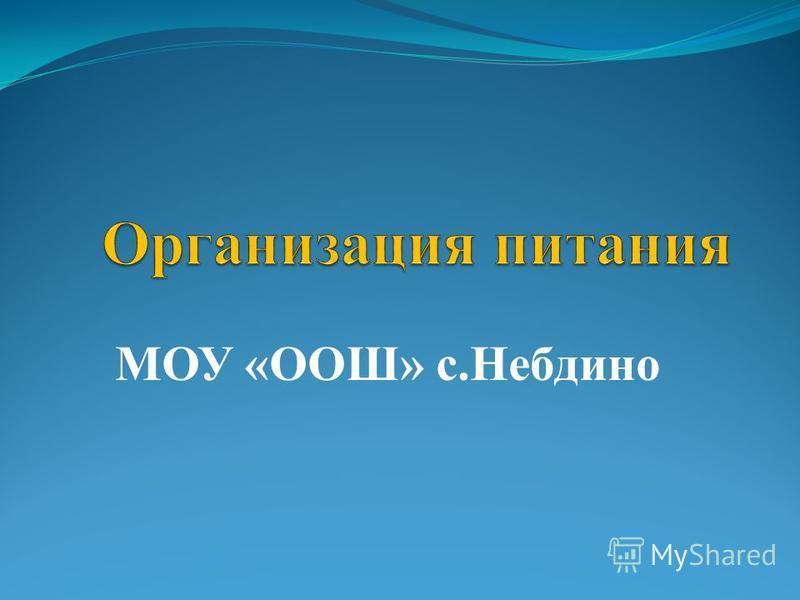 МОУ «ООШ» с.Небдино
