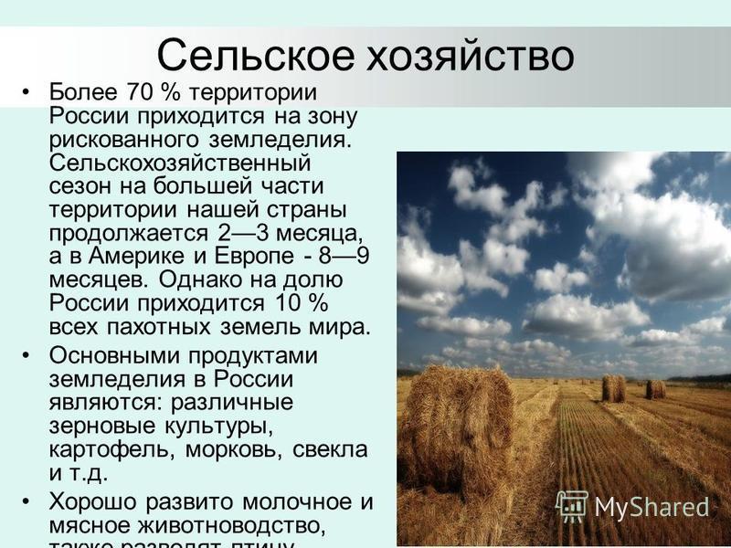 Сельское хозяйство Более 70 % территории России приходится на зону рискованного земледелия. Сельскохозяйственный сезон на большей части территории нашей страны продолжается 23 месяца, а в Америке и Европе - 89 месяцев. Однако на долю России приходитс