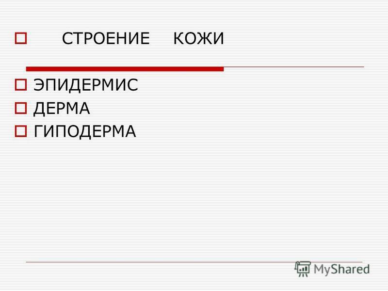 СТРОЕНИЕ КОЖИ ЭПИДЕРМИС ДЕРМА ГИПОДЕРМА