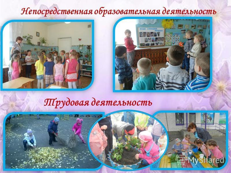 Трудовая деятельность Непосредственная образовательная деятельность