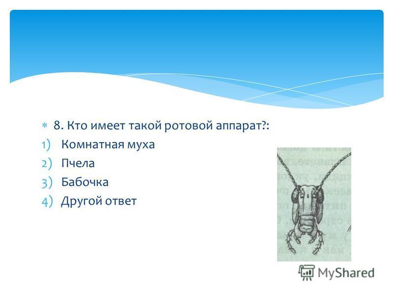 8. Кто имеет такой ротовой аппарат?: 1)Комнатная муха 2)Пчела 3)Бабочка 4)Другой ответ