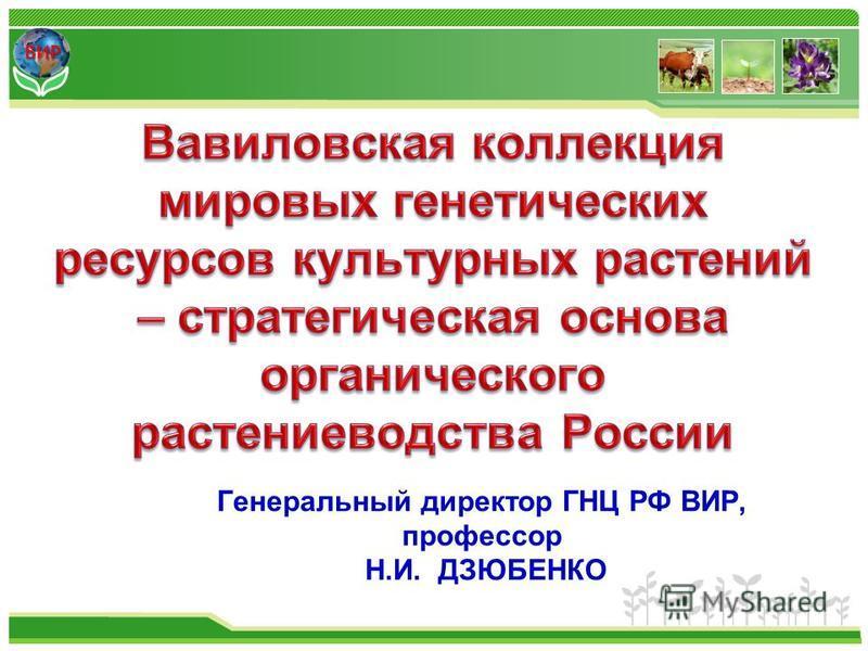 ВИР Генеральный директор ГНЦ РФ ВИР, профессор Н.И. ДЗЮБЕНКО