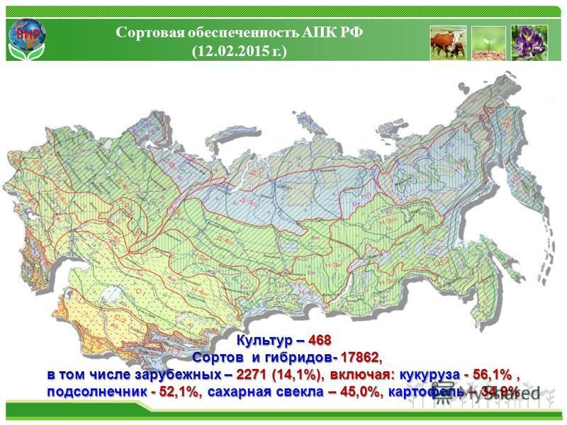 ВИР Сортовая обеспеченность АПК РФ (12.02.2015 г.) Культур – 468 Сортов и гибридов- 17862, Сортов и гибридов- 17862, в том числе зарубежных – 2271 (14,1%), включая: кукуруза - 56,1%, подсолнечник - 52,1%, сахарная свекла – 45,0%, картофель – 34,9%
