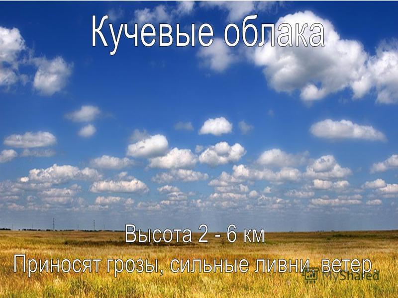 Кучевые облака Высота 2 – 6 км Приносят грозы, сильные ливни, ветер.