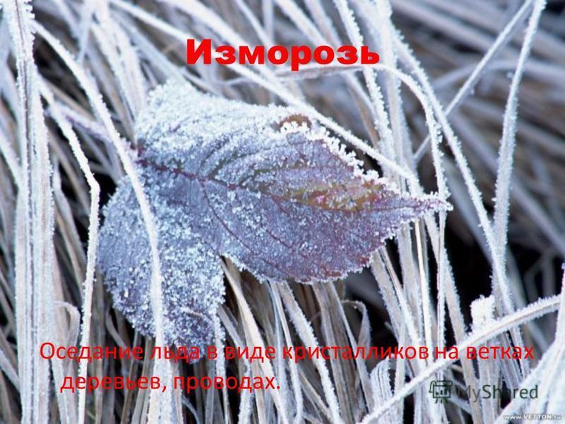 Изморозь Оседание льда в виде кристалликов на ветках деревьев, проводах.