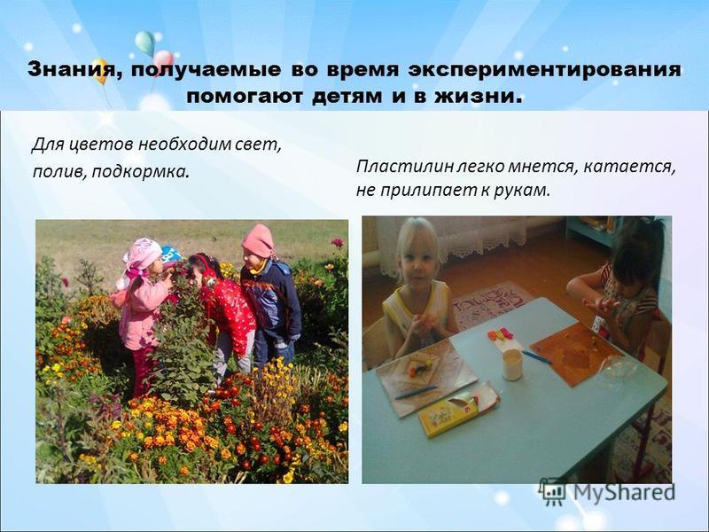 Знания, получаемые во время экспериментирования помогают детям и в жизни. Для цветов необходим свет, полив, подкормка. Пластилин легко мнется, катается, не прилипает к рукам.