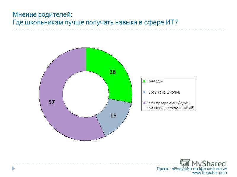Мнение родителей: Где школьникам лучше получать навыки в сфере ИТ? Проект «Будущие профессионалы» www.texpotex.com