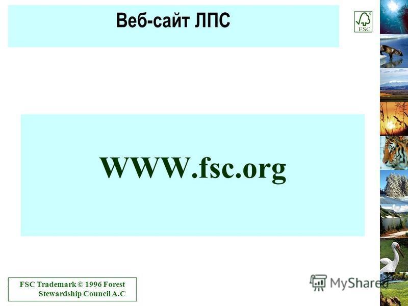 Веб-сайт ЛПС WWW.fsc.org FSC Trademark © 1996 Forest Stewardship Council A.C.