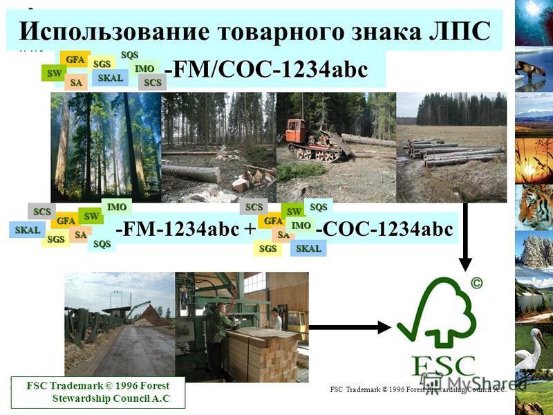 Использование товарного знака ЛПС -FM/COC-1234abc -FM/COC-1234abc -FM-1234abc + -COC-1234abc -FM-1234abc + -COC-1234abc FSC Trademark © 1996 Forest Stewardship Council A.C. GFA GFAGFA SW SW SW SGS SGS SGS SA SASA SQS SQS SQS SKAL SKAL SKAL IMO IMO IM