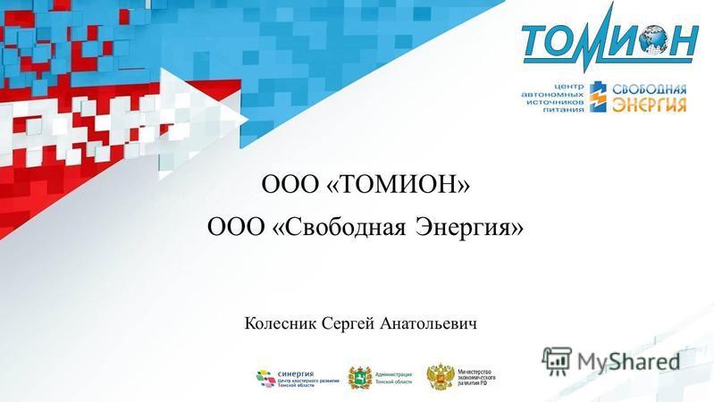ООО «ТОМИОН» ООО «Свободная Энергия» Колесник Сергей Анатольевич
