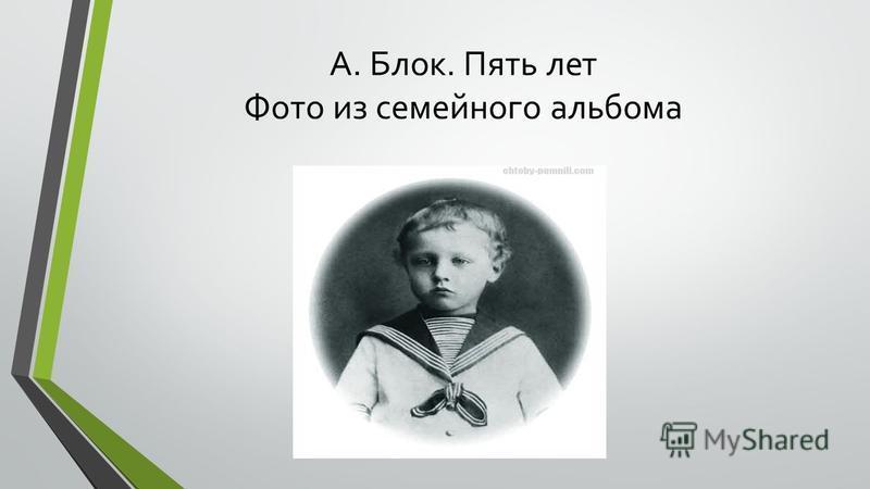 Александра Андреевна Блок с сыном. Петербург. 1883