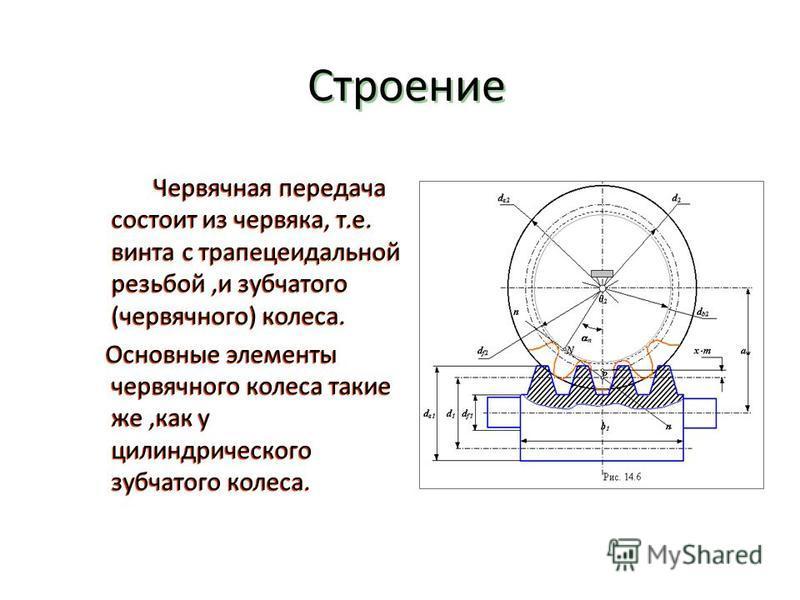 Строение Червячная передача состоит из червяка, т.е. винта с трапецеидальной резьбой,и зубчатого (червячного) колеса. Основные элементы червячного колеса такие же,как у цилиндрического зубчатого колеса. Червячная передача состоит из червяка, т.е. вин