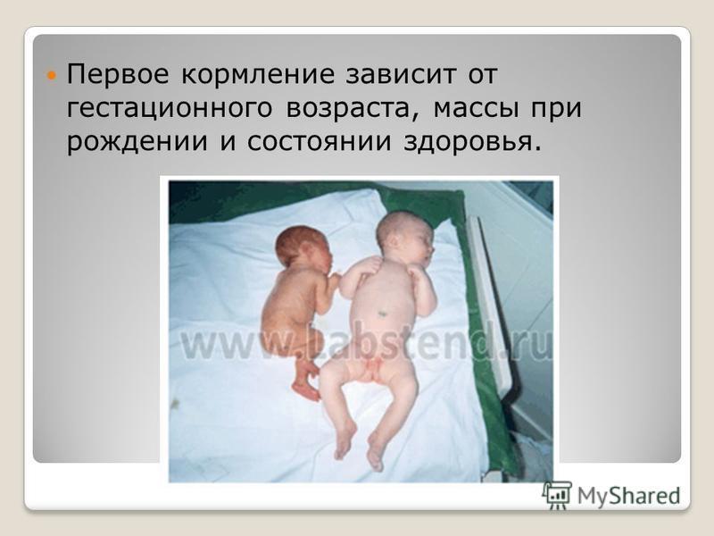 Первое кормление зависит от гестационного возраста, массы при рождении и состоянии здоровья.