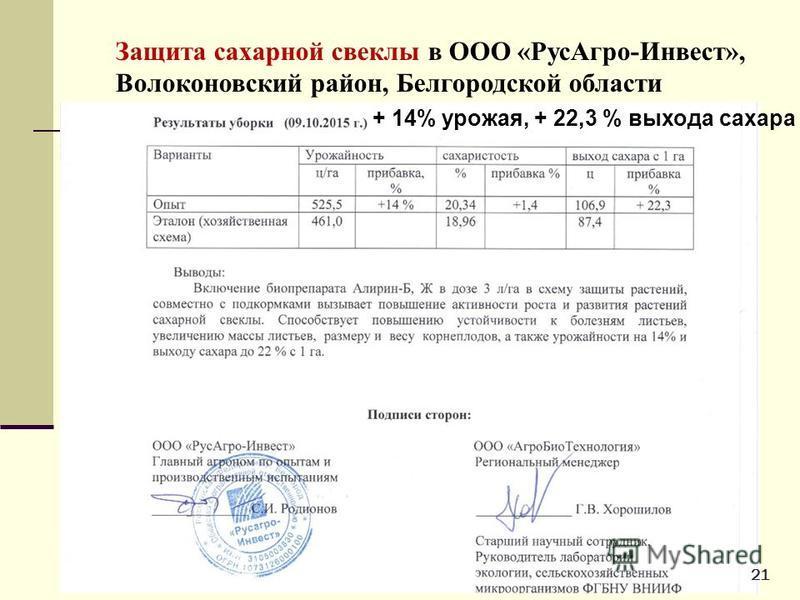 Защита сахарной свеклы в ООО «Рус Агро-Инвест», Волоконовский район, Белгородской области + 14% урожая, + 22,3 % выхода сахара 21