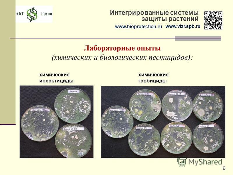 www.bioprotection.ru www.vizr.spb.ru Интегрированные системы защиты растений Лабораторные опыты (химических и биологических пестицидов): химические инсектициды химические гербициды 6