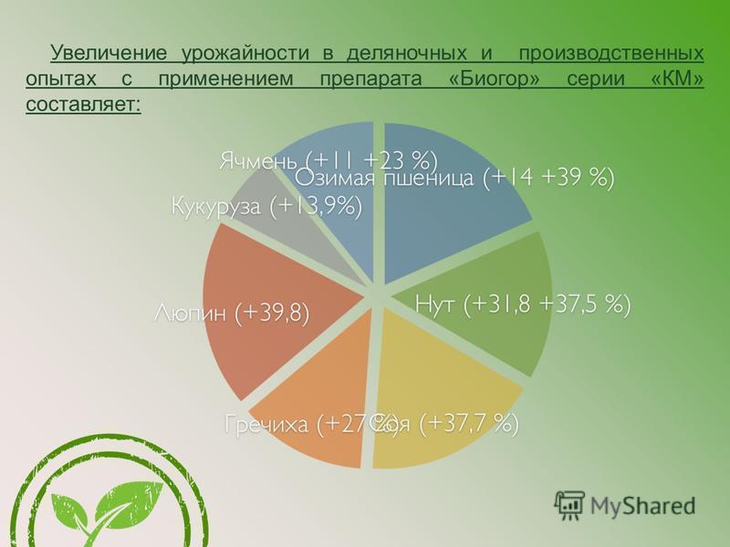 Увеличение урожайнасти в деляночных и производственных опытах с применением препарата «Биогор» серии «КМ» составляет: