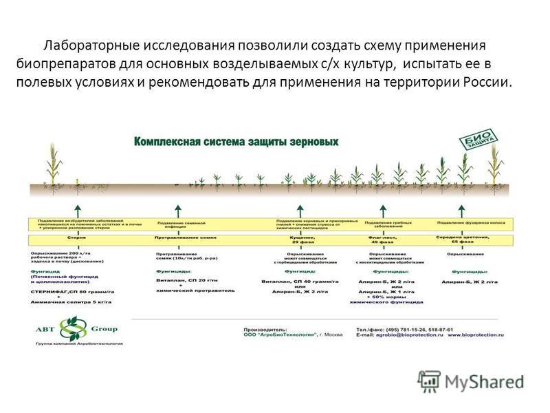 Лабораторные исследования позволили создать схему применения биопрепаратов для основных возделываемых с/х культур, испытать ее в полевых условиях и рекомендовать для применения на территории России.