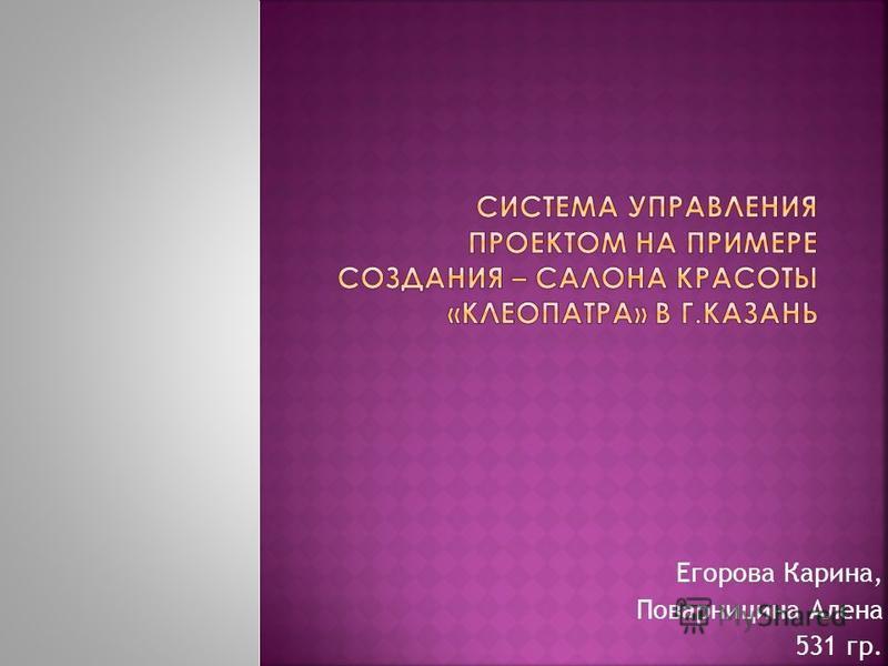 Егорова Карина, Поварницина Алена 531 гр.