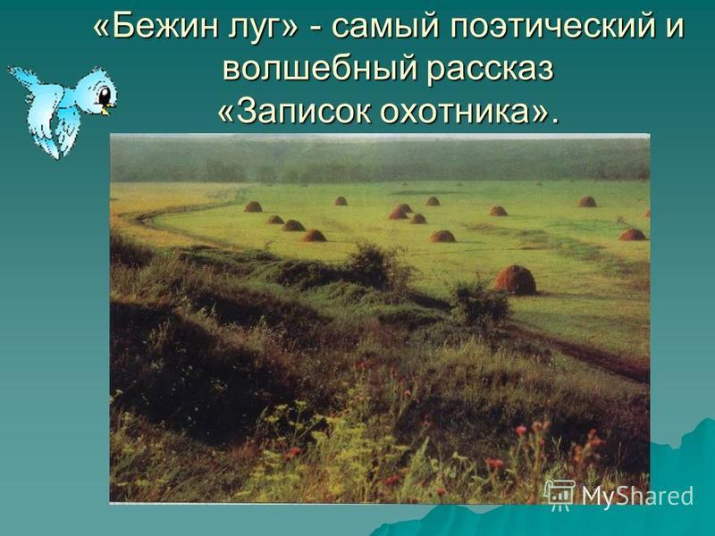 «Бежин луг» - самый поэтический и волшебный рассказ «Записок охотника».