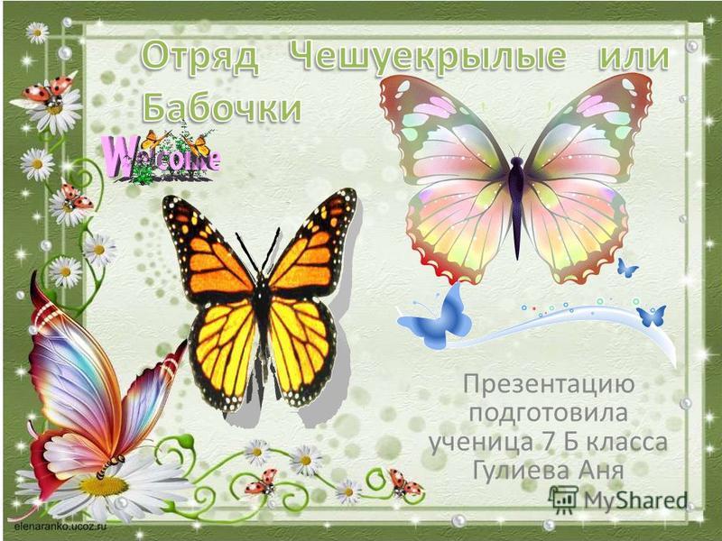 Презентацию подготовила ученица 7 Б класса Гулиева Аня