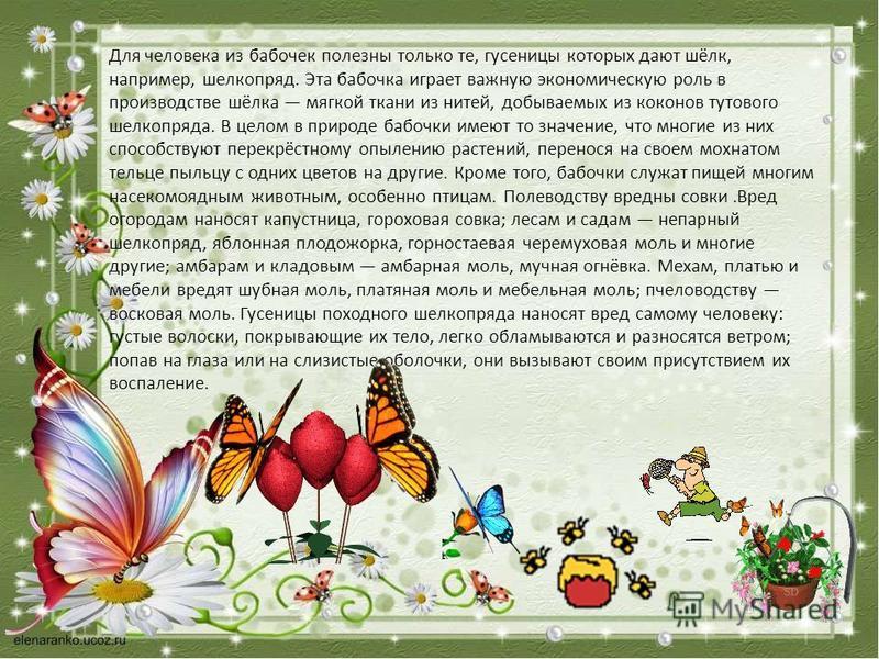 Для человека из бабочек полезны только те, гусеницы которых дают шёлк, например, шелкопряд. Эта бабочка играет важную экономическую роль в производстве шёлка мягкой ткани из нитей, добываемых из коконов тутового шелкопряда. В целом в природе бабочки