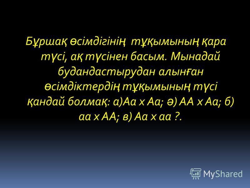 Б ұ рша қ ө сімдігіні ң т ұқ ымыны ң қ ара т ү сі, а қ т ү сінен басым. Мынадай будандастырудан алын ғ ан ө сімдіктерді ң т ұқ ымыны ң т ү сі қ андай болма қ : а)Аа х Аа; ә ) АА х Аа; б) аа х АА; в) Аа х аа ?.