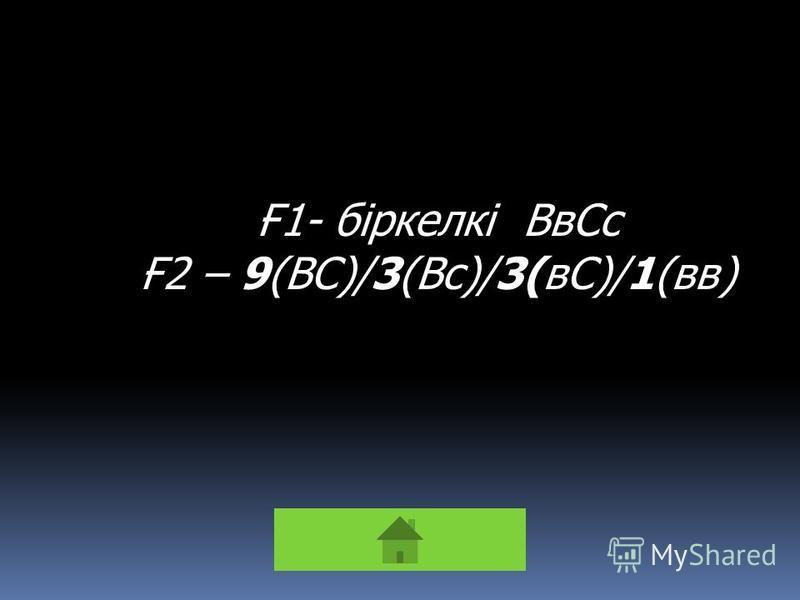 Ғ1- біркелкі ВвСс Ғ2 – 9(ВС)/3(Вс)/3(вС)/1(вв)
