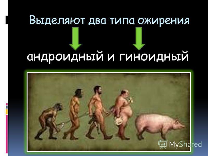 Выделяют два типа ожирения андроидный и гиноидный