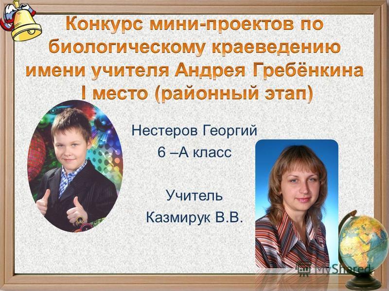 Нестеров Георгий 6 –А класс Учитель Казмирук В.В.