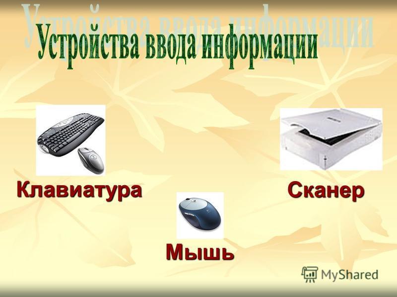 Клавиатура Сканер Мышь