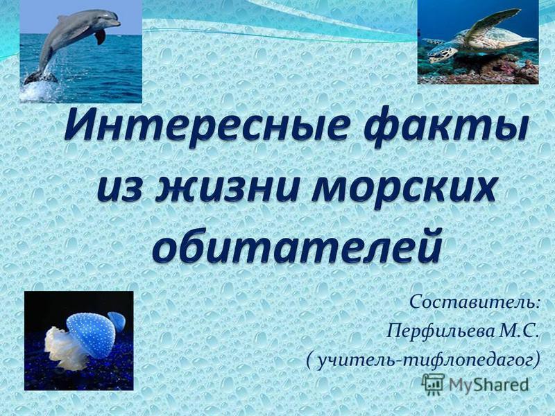 Составитель: Перфильева М.С. ( учитель-тифлопедагог)
