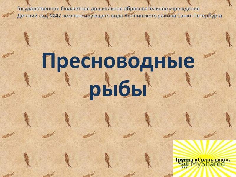 Пресноводные рыбы Государственное бюджетное дошкольное образовательное учреждение Детский сад 42 компенсирующего вида Колпинского района Санкт-Петербурга Группа «Солнышко».