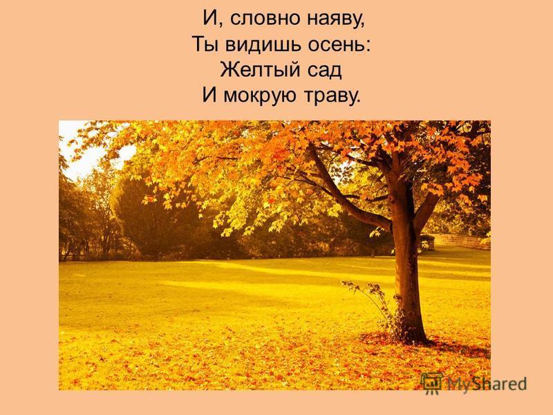 И, словно наяву, Ты видишь осень: Желтый сад И мокрую траву.
