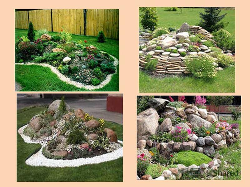 Ландшафтный дизайн и рабатки