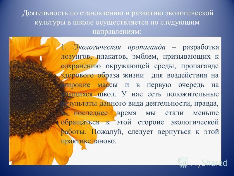 Деятельность по становлению и развитию экологической культуры в школе осуществляется по следующим направлениям: 1. Экологическая пропаганда – разработка лозунгов, плакатов, эмблем, призывающих к сохранению окружающей среды, пропаганде здорового образ