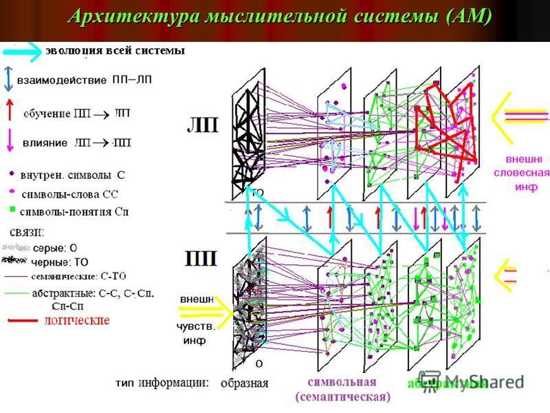 Ключевые моменты ЕПК ( чем мы «лучше» чем другие) континуальное представление нейропроцессоров; разделение всей системы на две подсистемы – для генерации и рецепции информации. Условно : правое и левое церебральные полушария (ПП и ЛП). ПП отвечает за