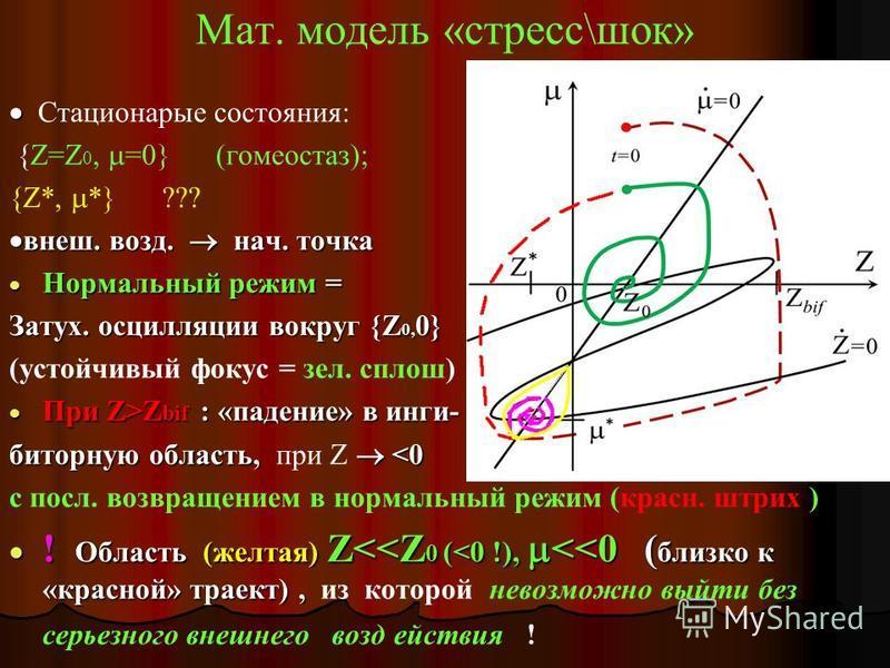 мат. модель «яйцо-курица» = уравнения гомеостаза Система уравнений для Z(t), (t), ki (t): Z 0 = уровень шума «в покое»; = агрегат. перемен. = Н глобального действия (возбужд. тормоз. ) ki = уровень Н локального действия (синтез в 1 синапсе) F(,Z) = н