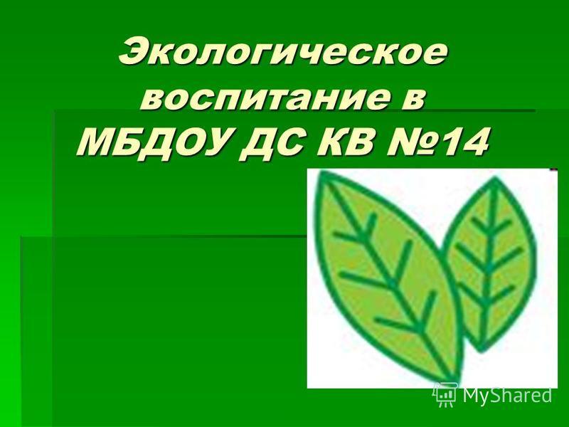 Экологическое воспитание в МБДОУ ДС КВ 14