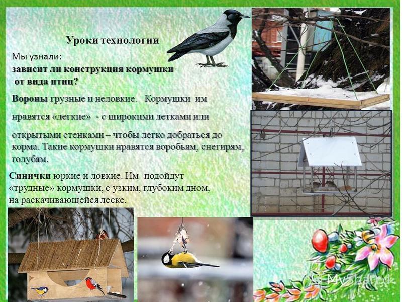 Уроки технологии Мы узнали: зависит ли конструкция кормушки от вида птиц? от вида птиц? Вороны грузные и неловкие. Кормушки им нравятся «легкие» - с широкими летками или открытыми стенками – чтобы легко добраться до корма. Такие кормушки нравятся вор