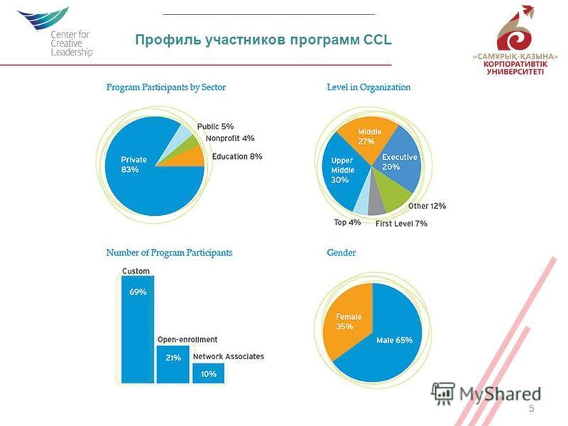 5 Профиль участников программ CCL