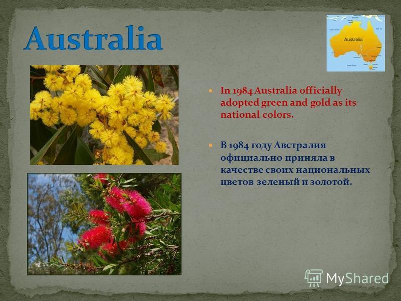 In 1984 Australia officially adopted green and gold as its national colors. В 1984 году Австралия официально приняла в качестве своих национальных цветов зеленый и золотой.