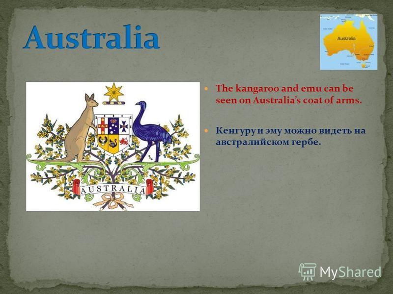 The kangaroo and emu can be seen on Australias coat of arms. Кенгуру и эму можно видеть на австралийском гербе.