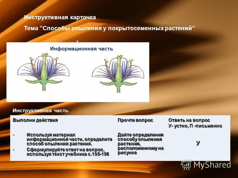 Инструктивная карточка Тема Способы опыления у покрытосеменных растений Информационная часть Инструктивная часть Выполни действия Прочти вопрос Ответь на вопрос У- устно, П -письменно Используя материал информационной части, определите способ опылени