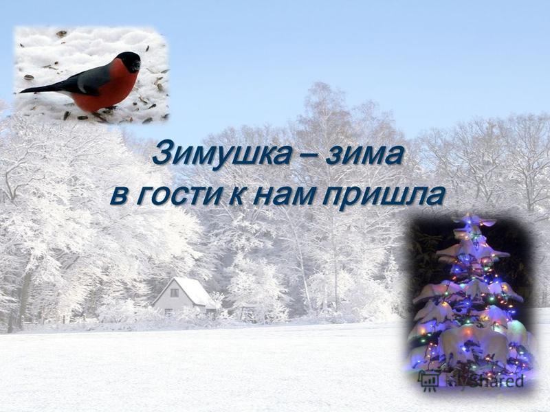 Зимушка – зима в гости к нам пришла