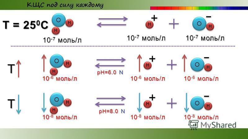 О н н О н 10 -7 моль/л T = 25 0 С 10 -7 моль/л н О н н О н 10 -6 моль/л T н О н н О н 10 -8 моль/л T н pH=6.0 N pH=8.0 N